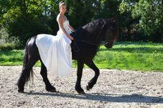 robe-de-mariee-createur-cheval