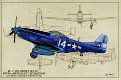 North Amerian Eft-51d Mustang Photograph - Naval Mustang Prototype - Profile Art by Tommy Anderson