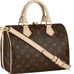 Louis Vuitton Speedy 25 Monogram Canvas M40390