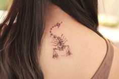 天蠍 習慣的保護色 其實不總是堅強 是沒關係的 Zodiac Constellations, Leaf Tattoos, Zodiac Signs