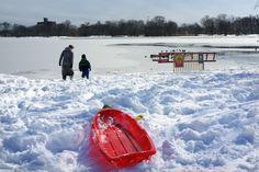 Prospect Park, Brooklyn NY (credit: Spencer Platt/Getty Images), Blizzard Nemo