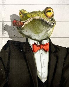 Animal Mugshot illustrations Jonathan Bartlett for Pierrepont Hicks. The Wolf Among Us, Frog Illustration, Frog Pictures, Frog Art, Cute Frogs, Frog And Toad, Mundo Animal, Animal Heads, Safari Animals