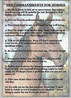 Horse Ten Commandments