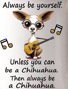 Always be yourself Funny Animal Pictures, Dog Pictures, Chihuahua Puppies, Chihuahuas, Chihuahua Quotes, I Love Dogs, Cute Dogs, Round Robin, Dog Quotes