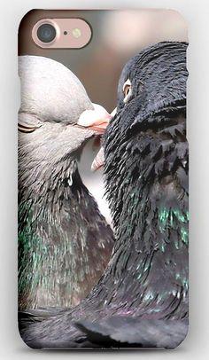 iPhone 7 Case Pigeons, Tenderness, Kissing, Birds