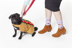 Whether you have a weenie dog, or just a dog pretending to be a weenie, we have a sock design for you. :)