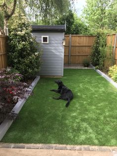 Want pet-friendly artificial grass? You've come to the right place! 🐾 Our furry friend loves his new Barcelona Range! ⭐ softness rating ⭐ wear rating ⭐ 8 year extended warranty Order Your Free Samples Today 👉