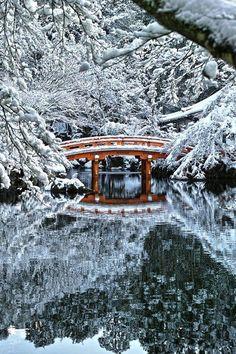 Crimson in White-Daigoji, Kyoto, Japan by Azul Obs… 4k Photography, Winter In Japan, Kyoto Winter, Snow In Japan, Japan Summer, Japan Landscape, Photos Voyages, Kyushu, Winter Scenes