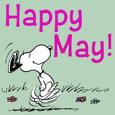 Snoopy Happy May Image Peanuts Cartoon, Peanuts Snoopy, Peanuts Comics, Images Snoopy, 1. Mai, Snoopy Quotes, Peanuts Quotes, Happy May, Charlie Brown And Snoopy