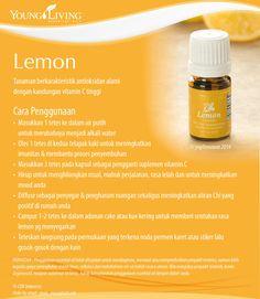 #katalogEO Everyday oils kit: LEMON Super affordable Young Living Company of Angels Indonesia