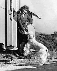 Greer Garson enjoys her dog's company while on location for Desire Me