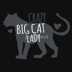 CRAZY BIG CAT lady! with cougar leopard jaguar by jazzydevil