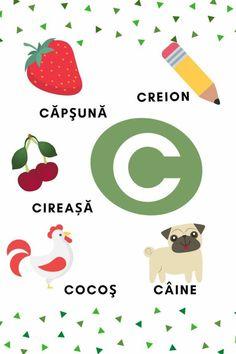Romanian Language, Learning The Alphabet, Educational Activities, Kids Education, Kids Rugs, School, Cards, Fun, Tudor