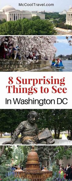 Surprising things to see in Washington DC | things to do in Washington DC | I have lived near DC for over 20 years and Expedia.com asked me for my surprising things to see in Washington DC.