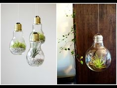 Jardim na lâmpada (como fazer um terrário em uma lâmpada) (artesanato + reciclagem) - YouTube