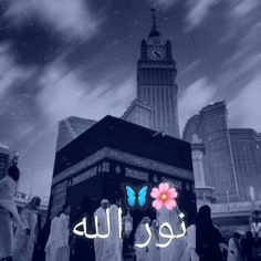 Best Islamic Images, Best Islamic Quotes, Quran Quotes Love, Islamic Videos, Islamic Inspirational Quotes, New Whatsapp Video Download, Download Video, Love Songs Lyrics, Cute Love Songs
