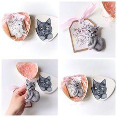 Кот-интеллектуал #котенок #котята #cats #cat #cats_of_instagram #whitecat #