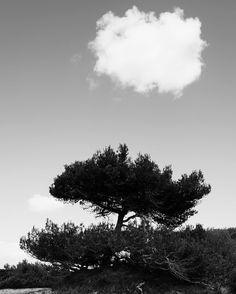 Double cloud #instagramcropsucks #ilederé #ré #lacouarde #blackandwhite #beach #plage #nature #leicaq #leica #madeinwetzlar #cloud