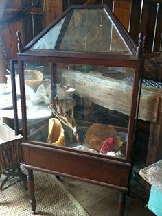 Vintage walnut wardian case....spring sale preview