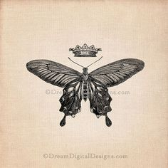 """""""How does one become a butterfly?  You must want to fly so badly that you're willing to give up being a caterpillar.""""  - Trina Paulus"""