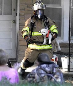 N.C. firefighters save family poodle from morning house fire   Shared by LION