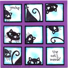 stampin up c is for cat | Stampin' Up! Cool Cat