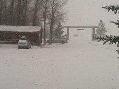 Winter morning at  Teton Valley Cabins