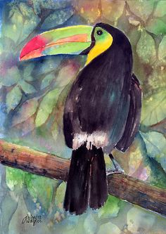 Keel-billed Toucan Painting by Arline Wagner - Keel-billed Toucan Fine Art Prints and Posters for Sale Watercolor Bird, Watercolor Animals, Watercolor Paintings, Rainforest Animals, Bird Artwork, Tropical Art, Bird Drawings, Exotic Birds, Beautiful Birds