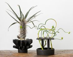 Sculptural ceramic planters by Ben Medansky