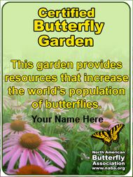 Visit the North American Butterfly Association to learn how to create a Certified Butterfly Garden of your own!
