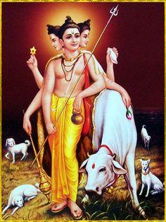 "DATTATREYA ॐ ""Dattatreya is at once the incarnation of Vishnu, Shiva and Brahma. Shiva Hindu, Shiva Art, Shiva Shakti, Hindu Deities, Hindu Art, Ganesh Images, Lord Krishna Images, Krishna Photos, All God Images"