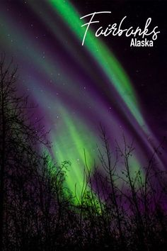 Delta Junction, Santa Claus House, See The Northern Lights, Whitewater Rafting, Arctic Circle, Day Trips, Alaska, Travel Guide, Things To Do