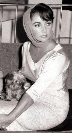 old hollywood- Elizabeth Taylor Old Hollywood Glamour, Vintage Glamour, Vintage Hollywood, Hollywood Stars, Classic Hollywood, Elizabeth Taylor, Divas, Sophia Loren, Beautiful People
