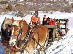 Winter Sleigh Ride. Would love to barrow santa's sleigh for a family christmas photo.
