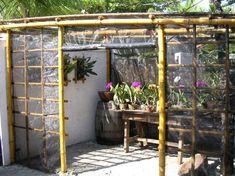 Bamboo Workshop: Orchids More Garden/backyard/outdoor by Homemade Greenhouse, Indoor Greenhouse, Small Greenhouse, Greenhouse Gardening, Greenhouse Ideas, Bamboo Garden, Shade Garden, Garden Beds, Orchid Nursery