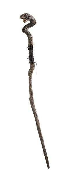 Staff of the Adder, a magical staff taken by Akimos from the Yuan Ti priest in the Tomb of the Pirate Lord
