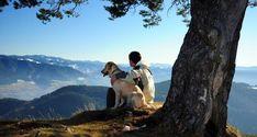 5 εκπληκτικοί τρόποι που ένας σκύλος μπορεί να τονώσει την ψυχική και σωματική σας ευεξία