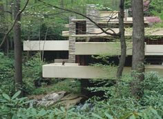Viewed from the opposite bank of the Bear Run stream, the cantilevered balconies at Fallingwater jut out into and become part of the enveloping woodland