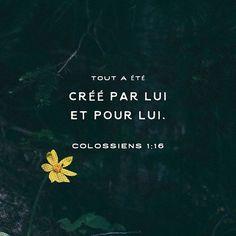Colossiens 1: 16 Ptsd Quotes, Bible Verses Quotes, Amor Quotes, Simple Prayers, Saint Esprit, Encouragement, God Jesus, Knowing God, Quotes About God