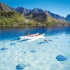 #destinavobucketlist  Bora Bora - French Polynesia Hashtag #destinavo on your travel photos for a chance to be featured!