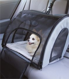 Travel Safety Dog Carrier