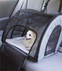 Travel Safety Dog Carrier