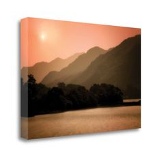 Tangletown Fine Art 'Peach Dream' by Dennis Frates Photographic Print on Wrapped Canvas
