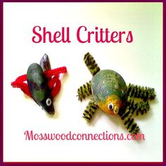Shell Critters Art Project for Kids This shell art project will transform an ordinary shell into something special.