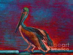 A Atlantic Brown Pelican digitally altered for effect and to coordinate with a Clients room colors.  The Brown Pelican is a small pelican found in the Americas. It is one of the best known and most prominent birds found in the coastal areas of the southern and western United States