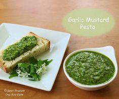 Garlic Mustard Pesto with Baby Spinach ~ 1C. Garlic Mustard Leaves, 1C. Baby Spinach, 1/2C. Olive Oil, 1/3C. Parmesan, 1/4C. Pecans, 1 clove Garlic, 1 TB. Butter & 1/2 tsp. Salt