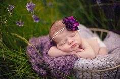 Skinny elastic plum purple flower headband for newborn baby or little girl, great photo prop