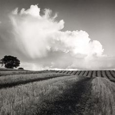 Large Cloud Near Bilsington by Fay Godwin Framed Photographic Print Magnolia Box Size: Extra Large Famous Photographers, Landscape Photographers, Black And White Landscape, Plein Air, Landscape Photos, Frames On Wall, Belle Photo, Black And White Photography, Monochrome Photography