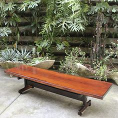 Banco Cintia em jacarandá por Sergio Rodrigues, recém-chegado à loja, 1964, Brasil. | Brazilian jacaranda Cintia bench designed by Sergio Rodrigues, recently received, 1964, Brazil.
