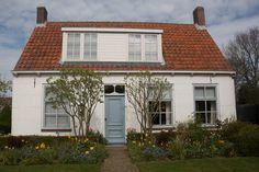 Фасад и два куста симметрично у входа